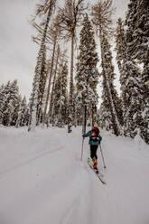 Skitour mit viel Neuschnee. Österreich, Kärnten, Gerlitzen (Berg), Villach - DAWF01778