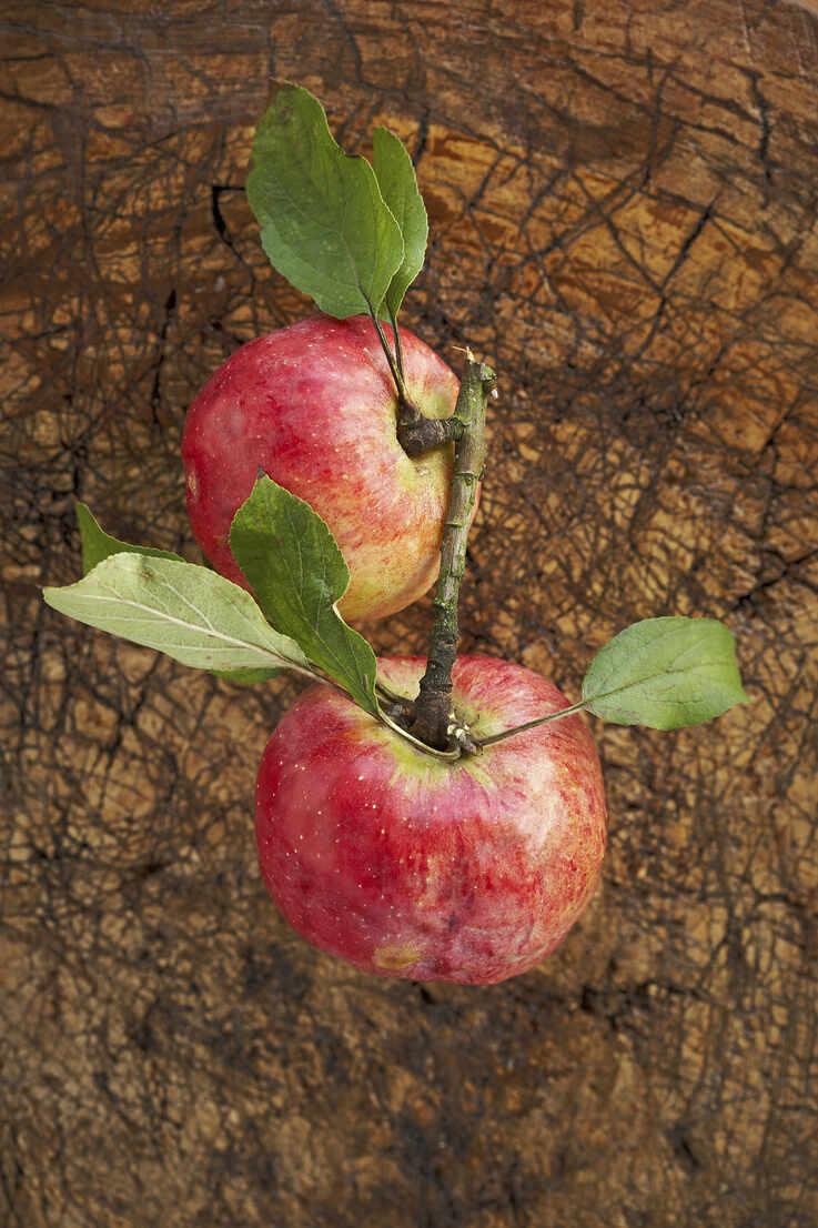 Two ripe apples lying on wooden surface - SABF00069 - SandraBielmeier/Westend61